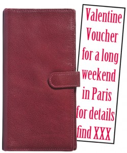 Travel wallet and voucher