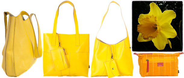 Shona Easton Yellow daffodil and bags for spring